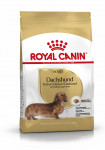 ADULT TECKEL ROYAL CANIN