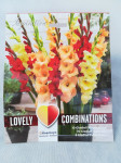 GLADIOLUS RED,YELL,ORGE X25 COMBI