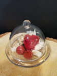 Cloche roses rouges