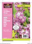 DEUTZIA TOURBILLON ROUGE 4 L