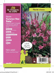GAURA SUMMER STAR BABY 3 L