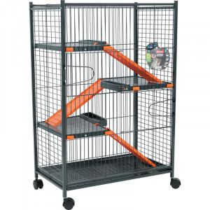 Cage INDOOR max loft 1 orange